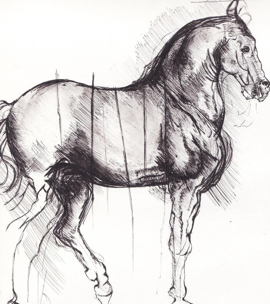 Artist Research: da Vinci -Study Of A Horse by ...