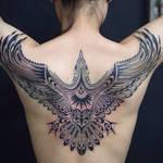 The Kingfisher by emayuku