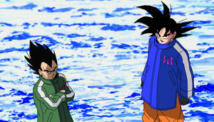 Goku and Vegeta in their old design remake