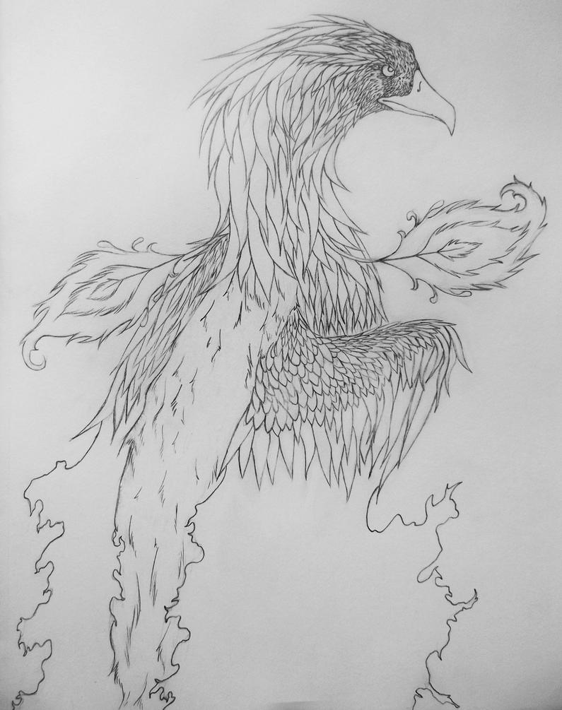 Phoenix by Darvia123