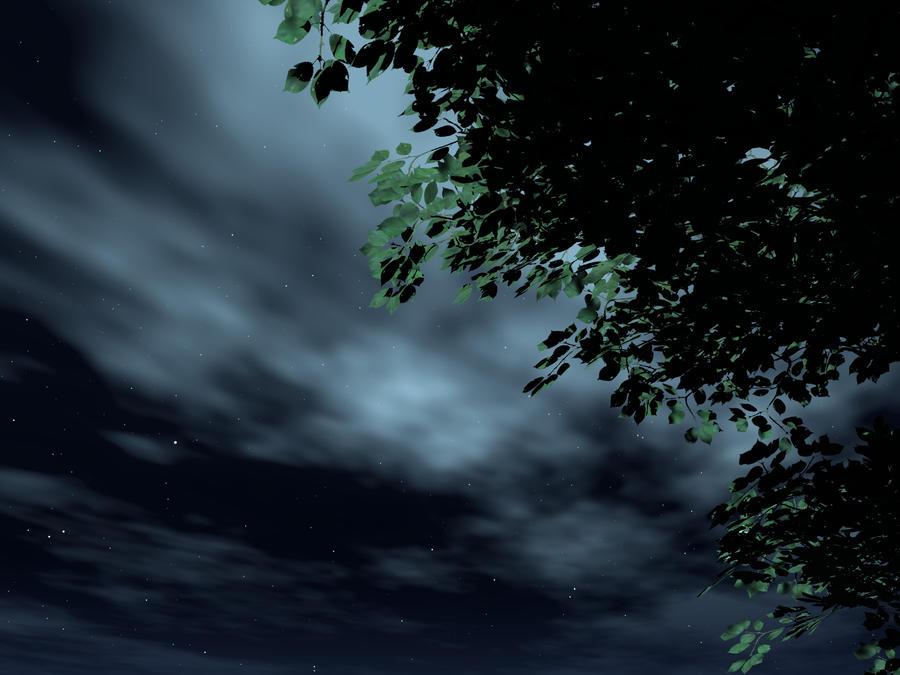 Stargazing - High Res by wiyaneth