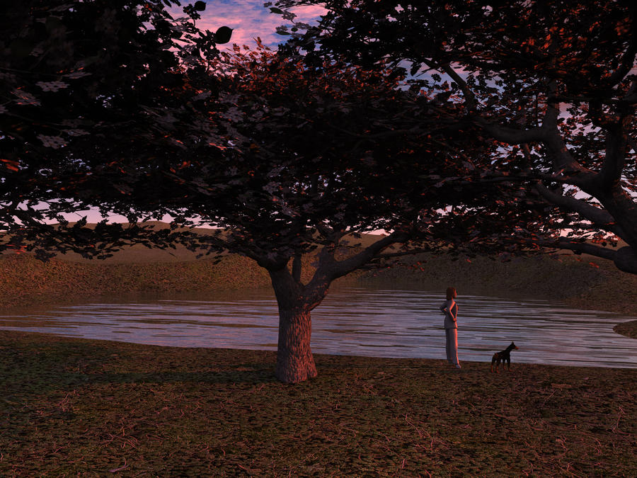 Cherry Trees - High Res by wiyaneth
