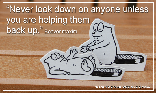 Daily Beaver - Altruism by RedWood-Beavers