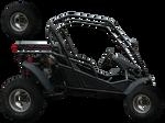 Buggy vehicle stock precut