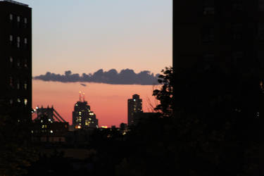 Sight from Brooklyn