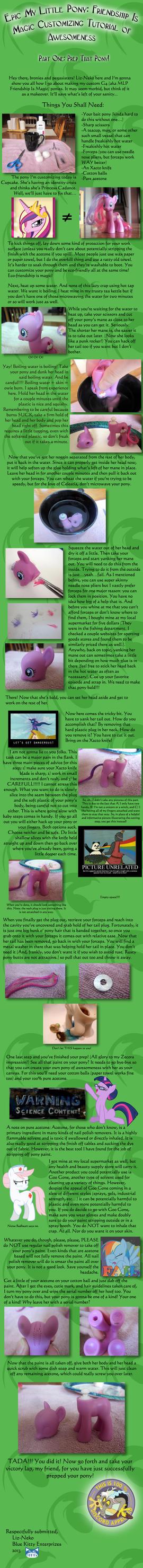 Epic MLP: FIM Customizing Tutorial Of Awesomeness! by liz-neko