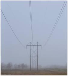 Fog II by SAVALISTE