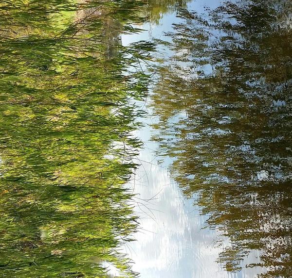 flowing by Savaliste