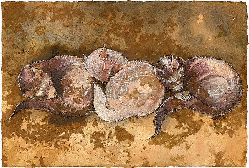 Ferrets! by shadowgirl