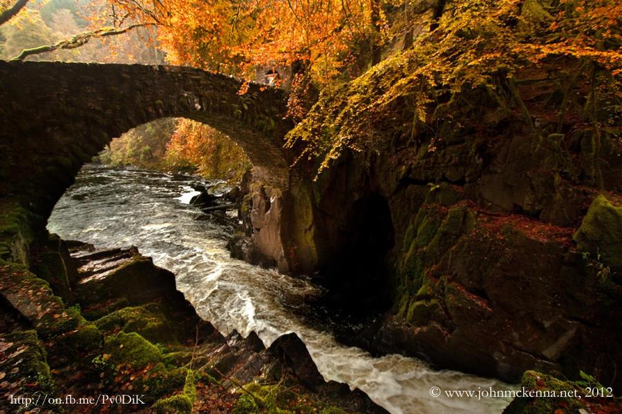 The bridge, Hermitage, Dunkeld, Scotland by Johnmckenna