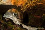 The bridge, Hermitage, Dunkeld, Scotland