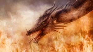 Dragon #1 by SeigneurNazgul