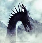 Dragon #7