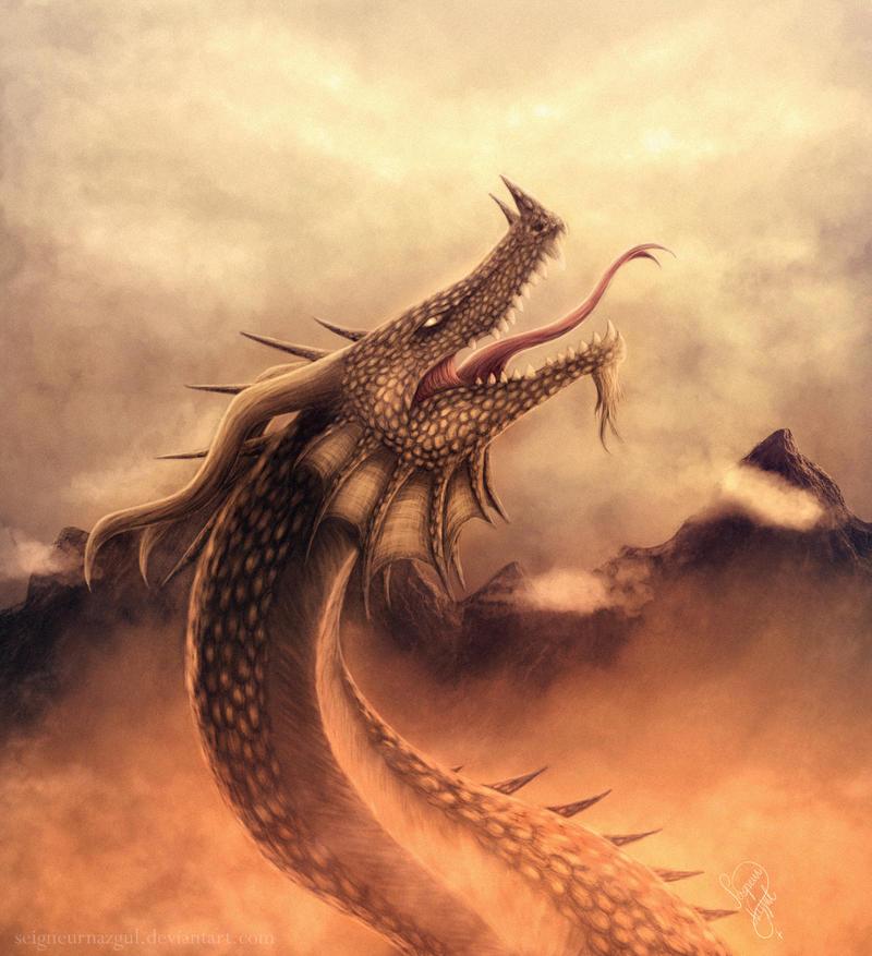 Dragon #12 by SeigneurNazgul