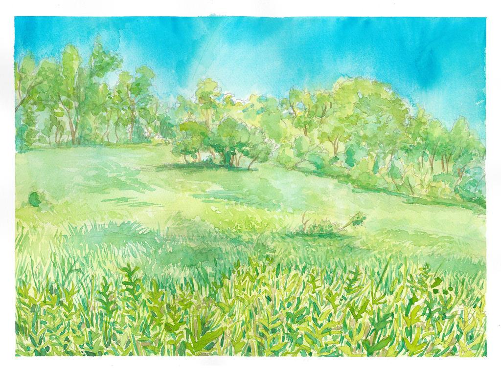 Open Field by hertubise