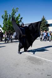 AN 2013 - Day 02 - Batman