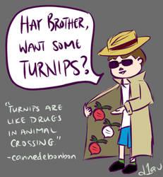 AC: Shady Turnip Dealer