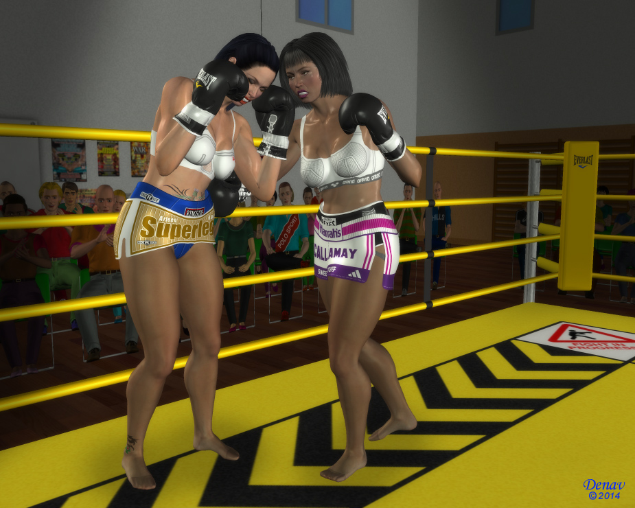 Boxers In Ring Silohouettes