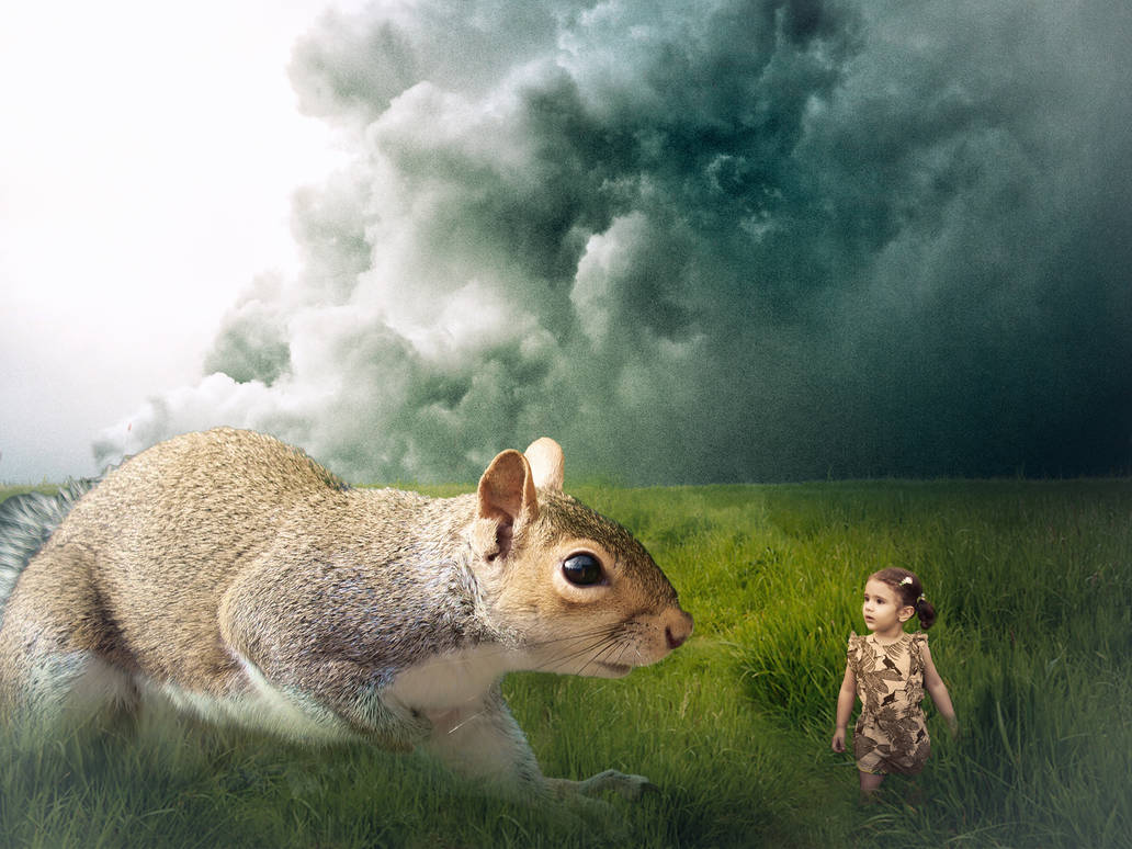 The Little Girl And The Squirrel