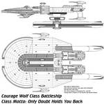 Courage Wolf Class Ship (Did this years ago)