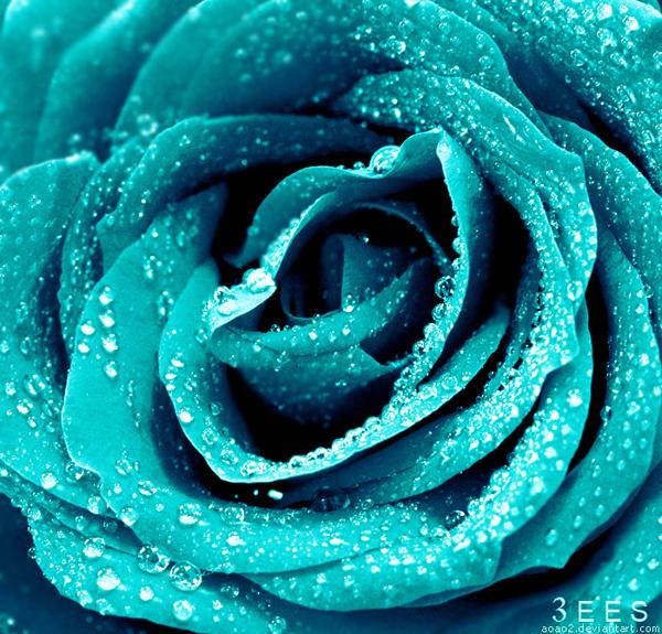 Frozen ... by aoao2
