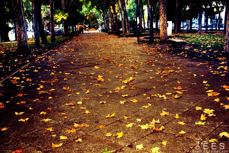 Autumn ... by aoao2