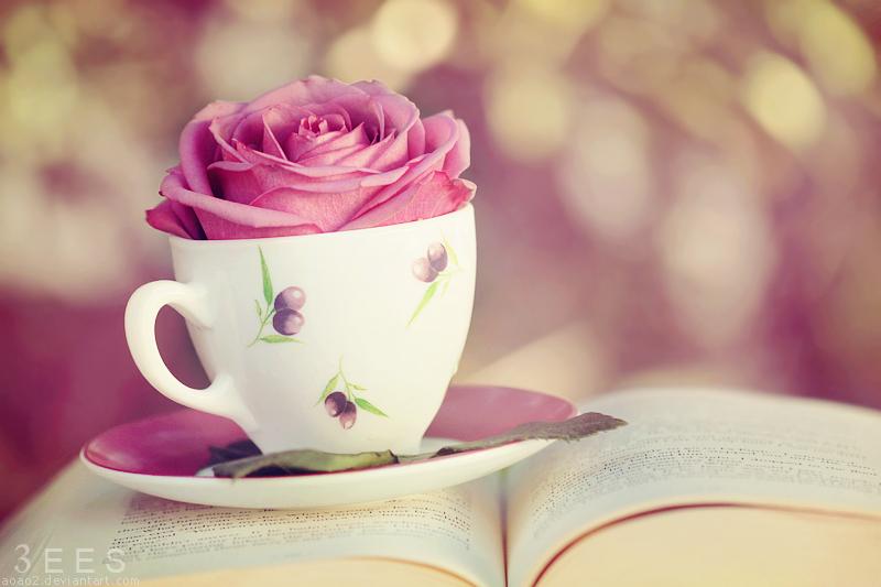 najromanticnija soljica za kafu...caj - Page 5 Wonderland_____by_aoao2-d4i45aw