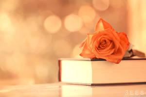 Soft book ... by aoao2