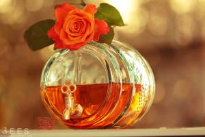 Orange ... by aoao2