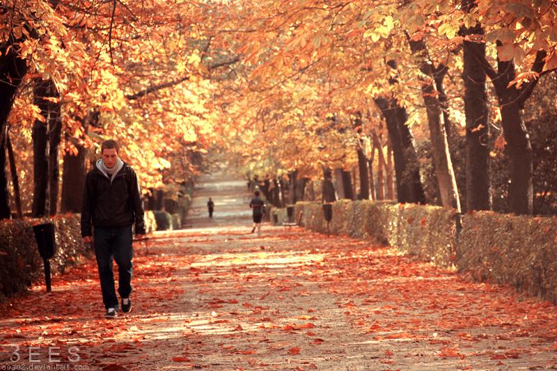 Walking alone ... by aoao2