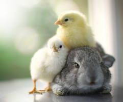 Cuddling ... by aoao2