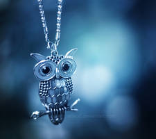 Night owl ...