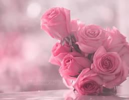 Birthday roses by aoao2