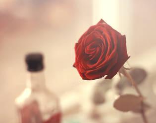 I love you tonight by aoao2