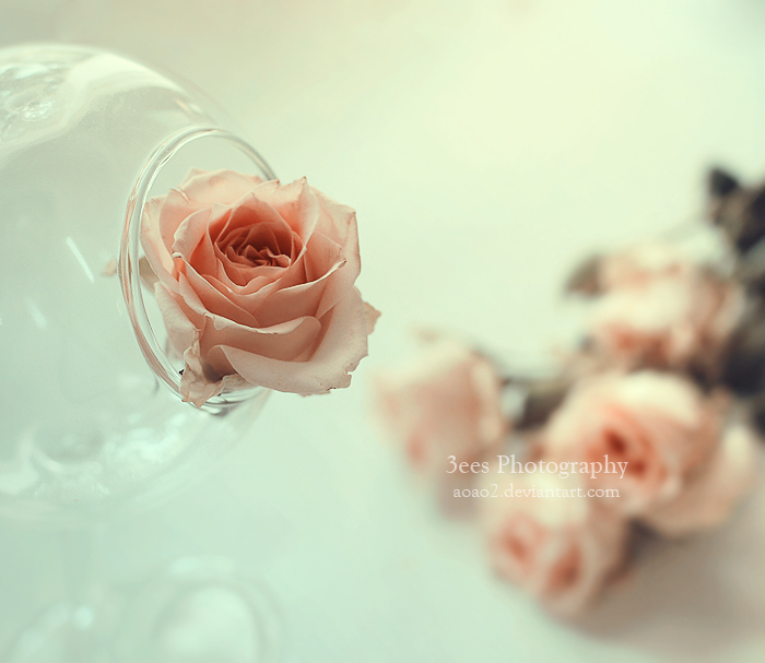 Breath of life by aoao2