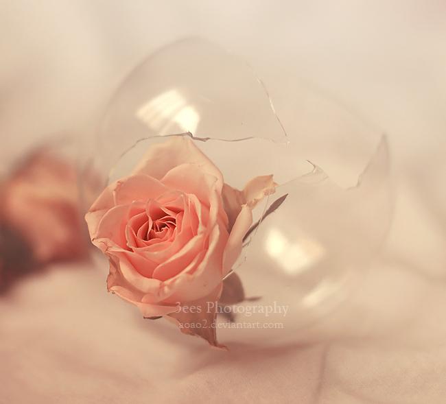 broken glass by aoao2