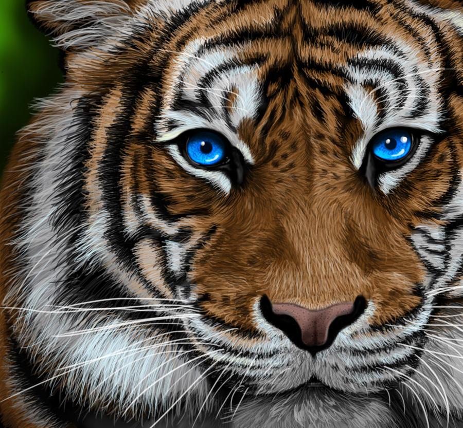 Tigre photoshop by gibidoune on deviantart - Comment dessiner un tigre ...