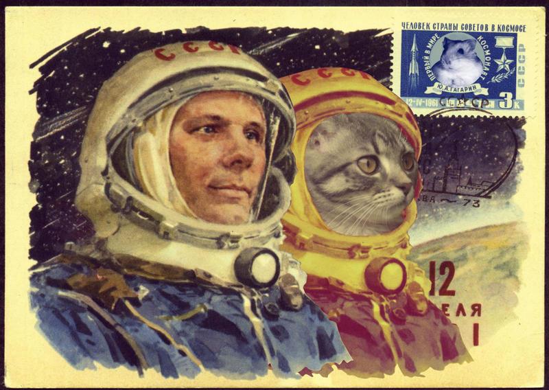 Communist cats also ventured into space by Tijgerkat