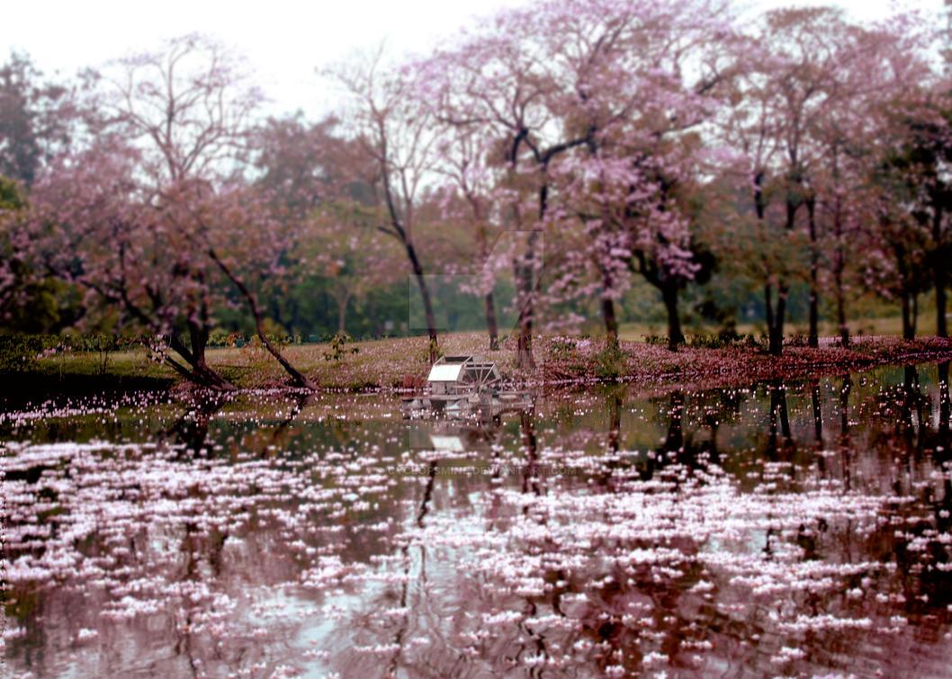 A Japanese Lake in Bangkok by cyclopsmine