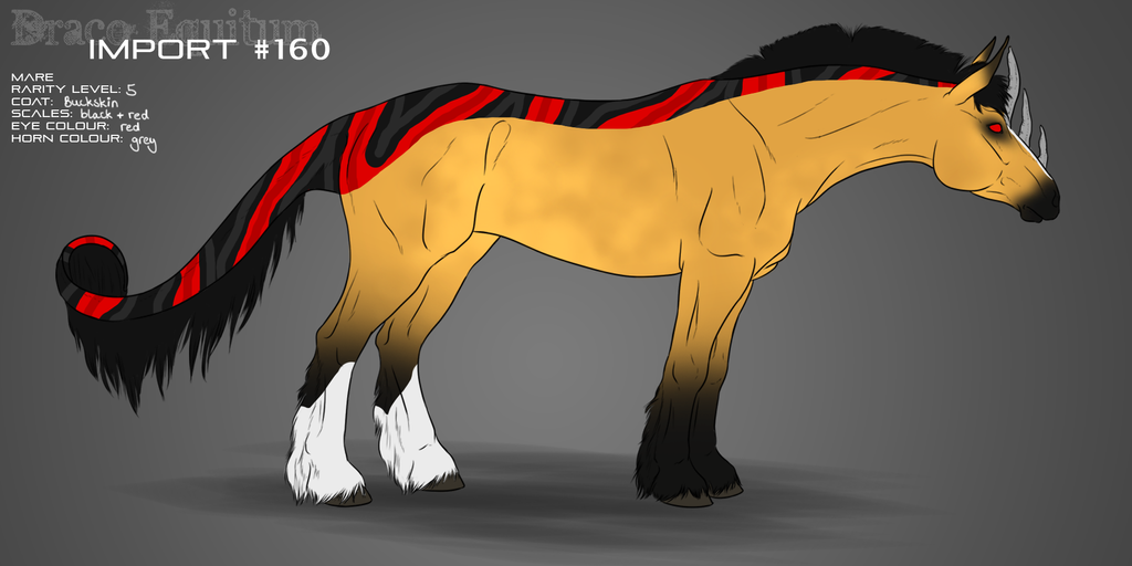 #160 Draco Equitum Design by yokuns