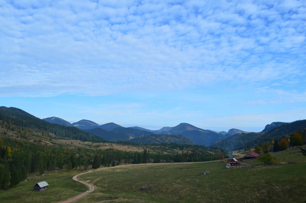 The road by Bushido112 by Bushido112