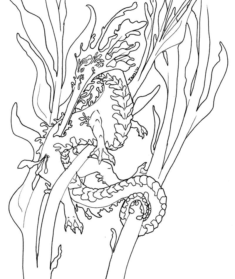 D Line Drawings Quest : Leafy sea dragon lineart by tamiveldura on deviantart