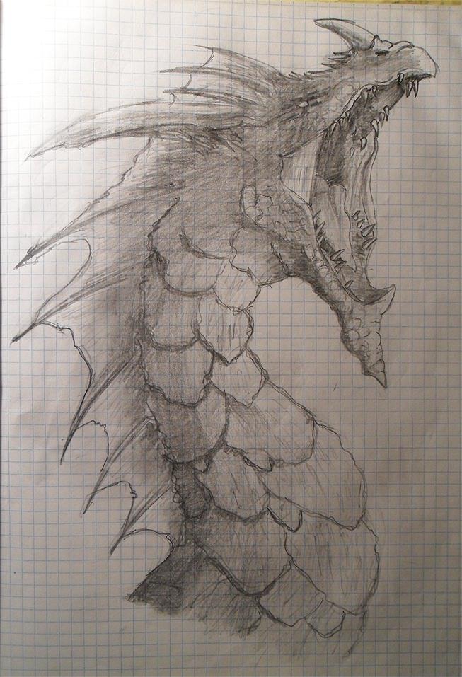 Dragon by Inqubus-verseum