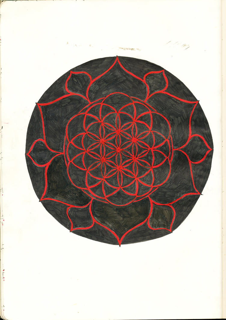 List Of Synonyms And Antonyms Of The Word Lotus Flower Of Life