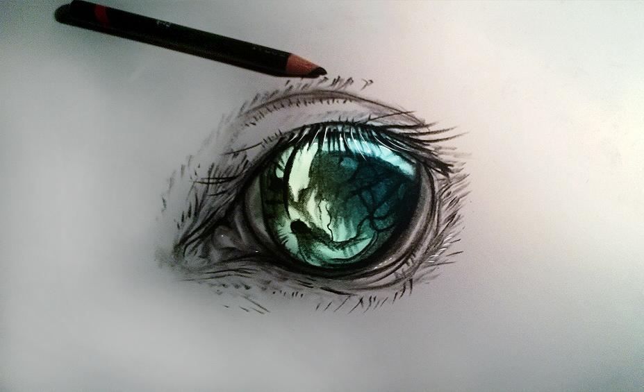 Horse eye by ryky