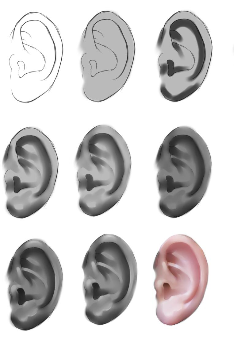 Ear tutorial by ryky