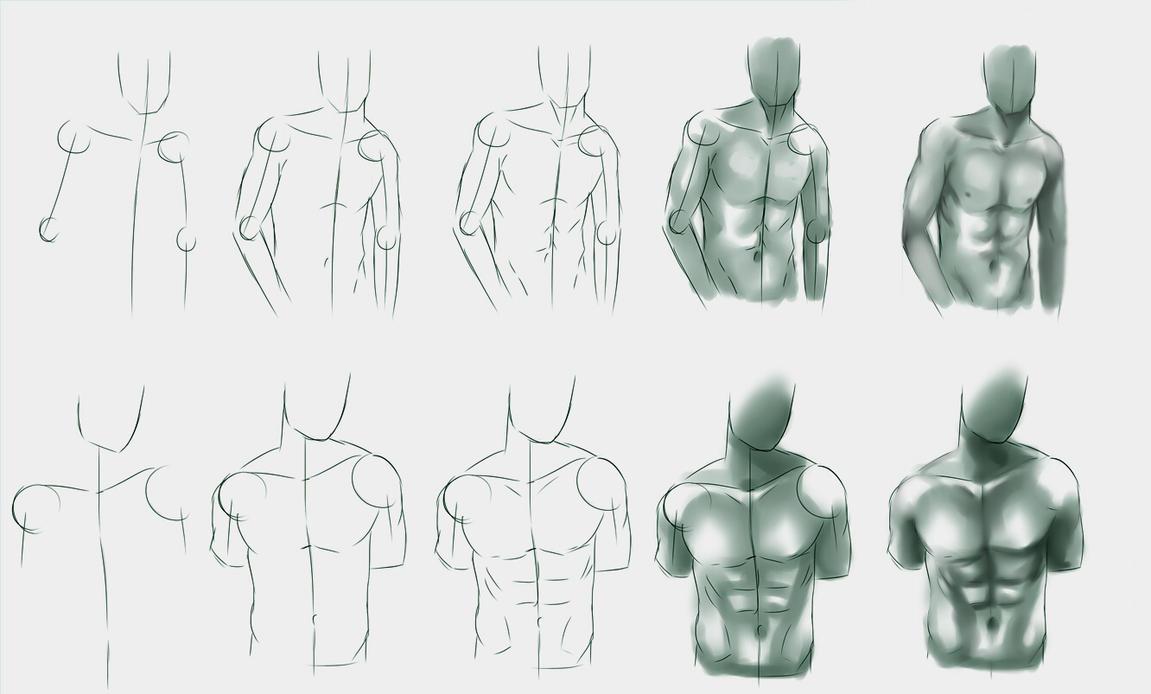 Male body study by ryky