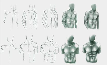 Male body study