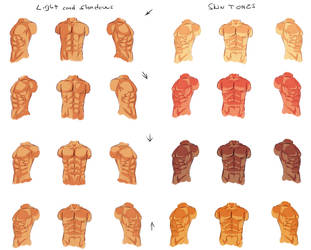 Male anatomy - light and shadows by ryky