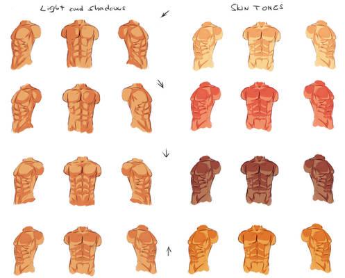 Male anatomy - light and shadows
